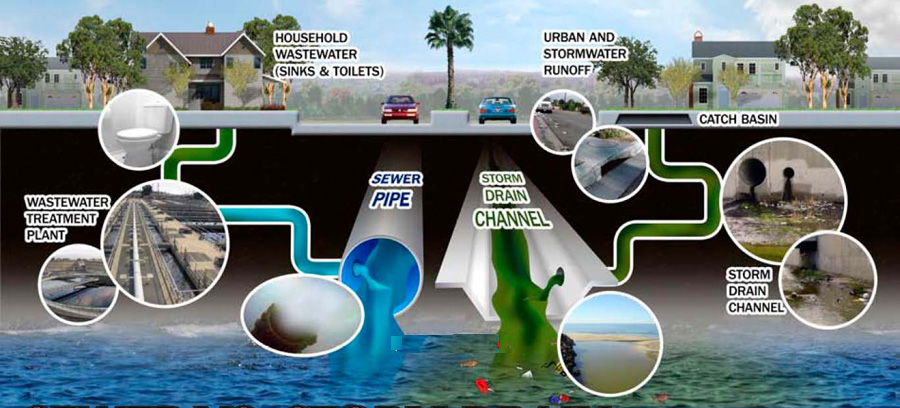 Storm Drain System vs Sanitary Sewer System